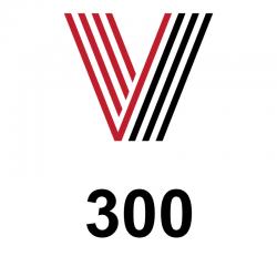 Licencja v-Maintenance 300